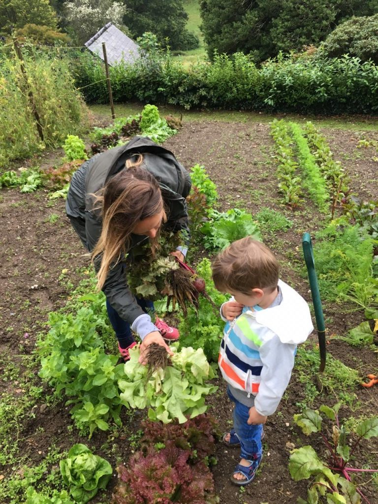 Collecting veg from the Kitchen Garden
